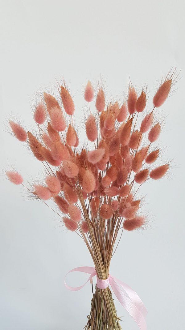 Bloemen drogen uitgeest webshop droogboeket limmen castricum akersloot alkmaar uitgeest