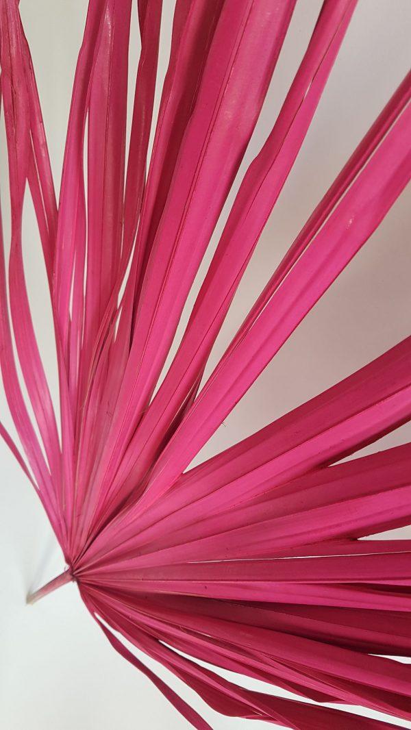 Palm blad roze gedroogd blad droogbloemen uitgeest leafs flower art